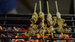 Flame Grilled Squid at a Bangkok Street Stall Stock Video Footage