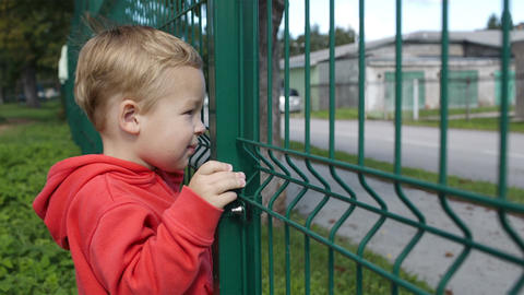Little boy peering through a wire fence Stock Video Footage