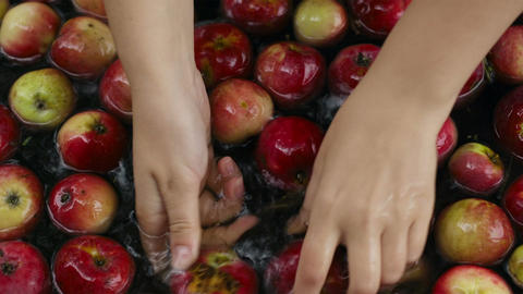Washing apples Stock Video Footage