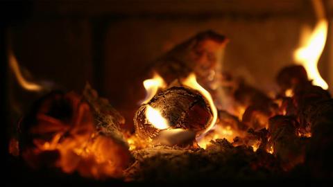 Burning firewood Stock Video Footage