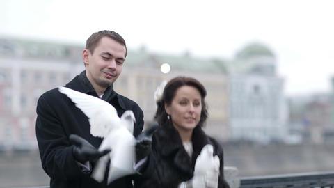 Releasing wedding pigeons Footage