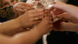 Group of people toasting at a celebration Footage