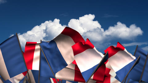 Waving French Flags Animation