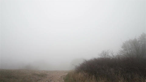 Scary Hill Foggy Forest 3 Stock Video Footage