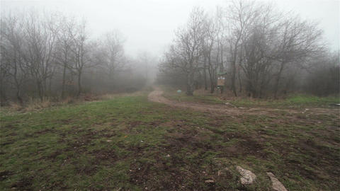 Scary Hill Foggy Forest 11 Stock Video Footage