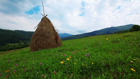 summer landscape with hut. timelapse Stock Video Footage