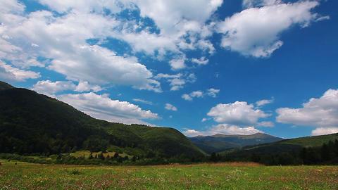 summer landscape. timelapse Footage