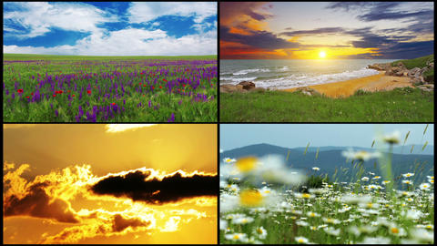 series of summer landscape Stock Video Footage