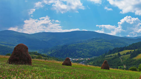 summer landscape with hut Stock Video Footage