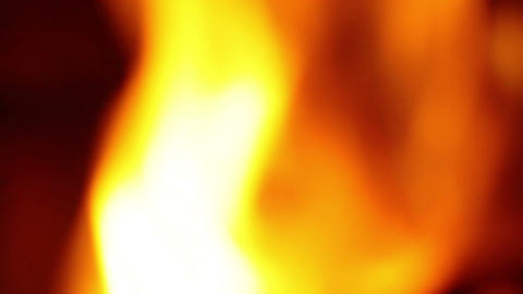 the fire Stock Video Footage