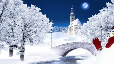 Winter 1 Landscape Stock Video Footage