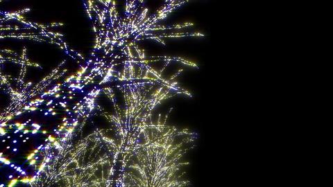 illumination tree neon A 1 HD Stock Video Footage