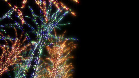 illumination tree neon A 2 HD Stock Video Footage