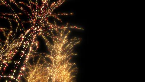 illumination tree neon A 4 HD Stock Video Footage
