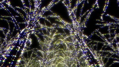 illumination tree neon Aa 1 HD Stock Video Footage