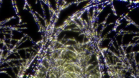 illumination tree neon Aa 1 HD Stock Video Footage