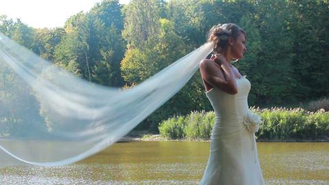 Bride 1 Stock Video Footage