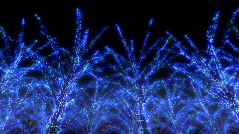 illumination tree neon C 3 HD Stock Video Footage