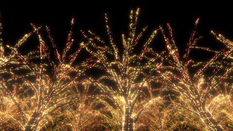 illumination tree neon C 4 HD Stock Video Footage