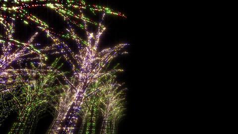 illumination tree neon D 2 HD Stock Video Footage