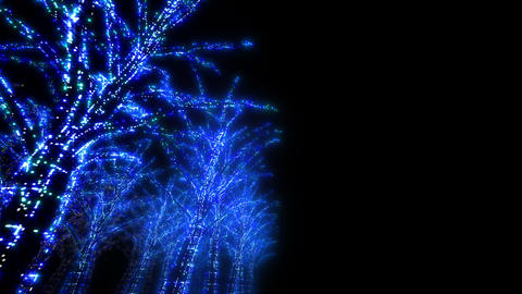 illumination tree neon D 3 HD Stock Video Footage