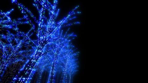illumination tree neon D 3 HD Stock Video Footage