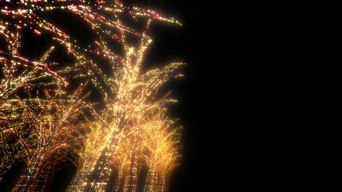 illumination tree neon D 4 HD Stock Video Footage