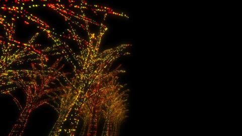 illumination tree neon D 4m HD Stock Video Footage