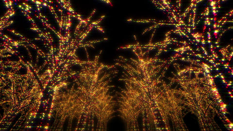 illumination tree neon Dd 1 HD Stock Video Footage