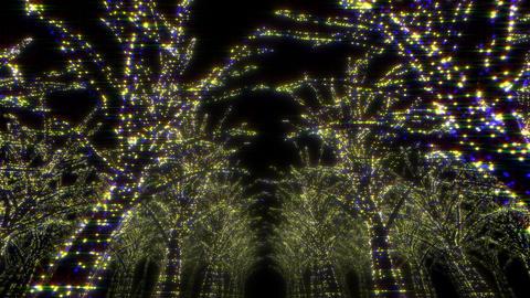 illumination tree neon Dd 1 HD Stock Video Footage