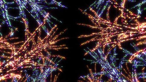 illumination tree neon E 2 HD Stock Video Footage