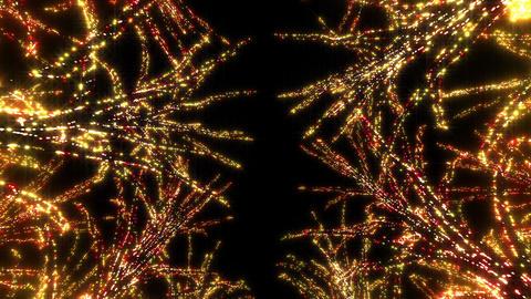 illumination tree neon E 4 HD Stock Video Footage