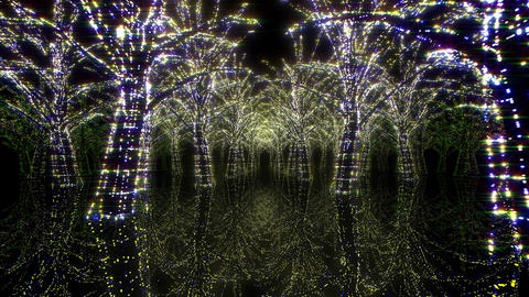 illumination tree neon H 1 HD Stock Video Footage