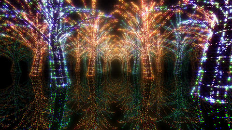 illumination tree neon H 2 HD Stock Video Footage