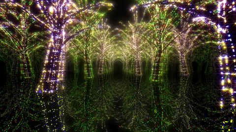 illumination tree neon H 2 HD Stock Video Footage