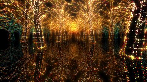 illumination tree neon H 4 HD Stock Video Footage