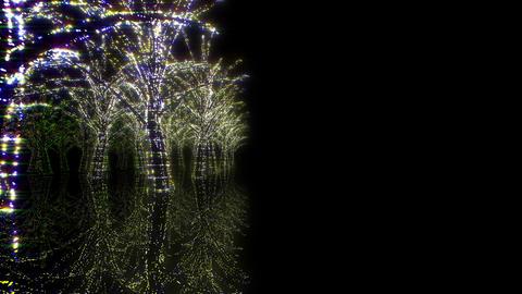 illumination tree neon Hh 1 HD Stock Video Footage