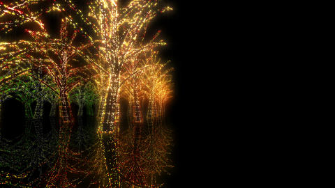 illumination tree neon Hh 4 HD Stock Video Footage