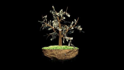 Plant a Dollar Harvest Thousands with Alpha Animation