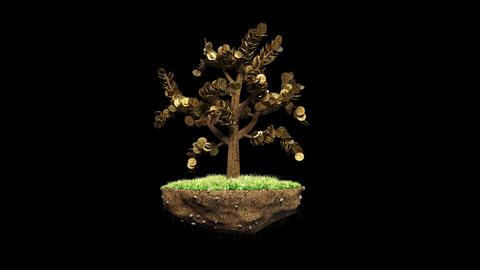 Plant a Dollar with Alpha Animation
