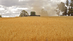 Harvest 05 HD Stock Video Footage