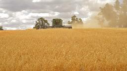 Harvest 05 HD Footage