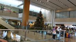 Singapore Changi Airport Terminal 2.(SINGAPORE CHA Stock Video Footage