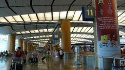 Singapore Changi Airport departure hall (SINGAPORE Stock Video Footage