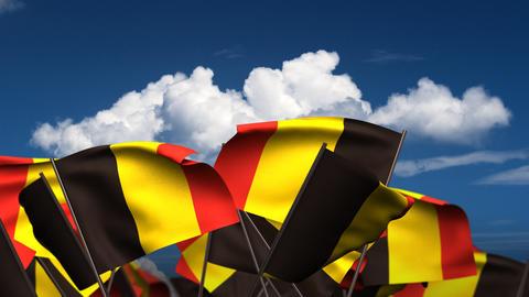 Waving Belgian Flags Stock Video Footage
