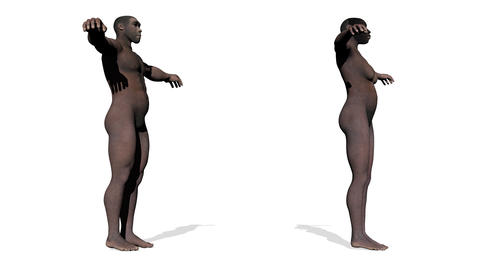 Homo erectus - 3D render Stock Video Footage
