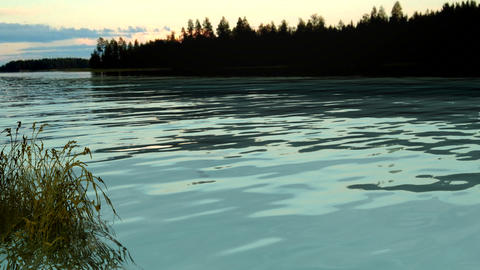 float grass and lake Stock Video Footage
