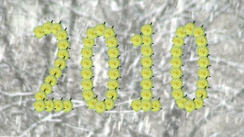 "Montage opening ""Jade"" roses year 2010 shape snowflakes... Stock Video Footage"