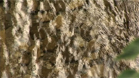 ntsc water ripples Stock Video Footage
