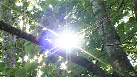 ntsc natural shining sun Stock Video Footage